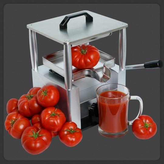 Купить Dream Juicer Press JDP-01 - ручной пресс для сока