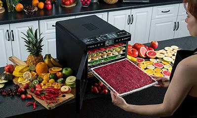 Сушилка для фруктов и овощей дегидратор RAWMID Modern RMD-07