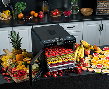 Электросушилка для овощей и фруктов RAWMID Modern RMD-07