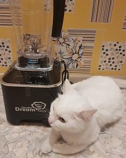 Отзыв о блендере RAWMID Dream Luxury 2 BDL-09